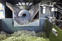 Chip build-up in an auger type conveyor